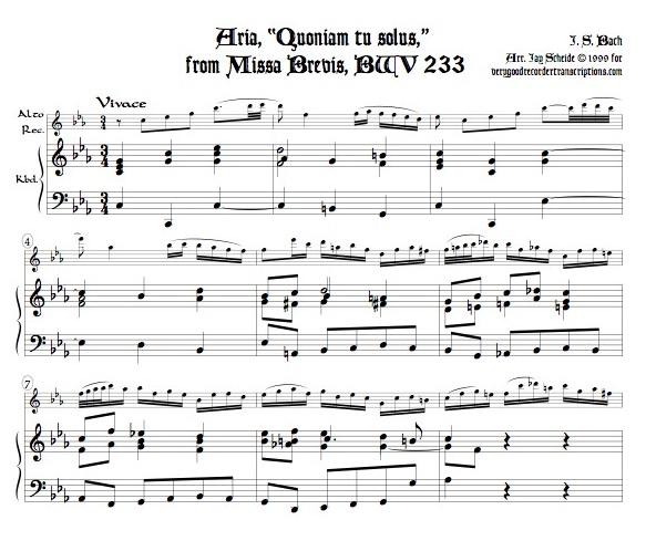 """Aria, """"Quoniam tu solus,"""" from Missa Brevis, BWV 233"""