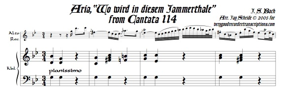 "Aria, ""Wo wird in diesem Jammerthale,"" from Cantata 114"