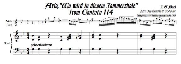 "Aria, ""Wo wird in diesem Jammerthale,"" from Cantata 114"