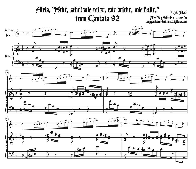 "Aria, ""Seht, seht! wie reißt, wie bricht, wie fällt,"" from Cantata 92"