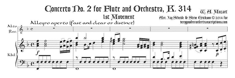 Concerto No. 2 for Flute & Orchestra, K.314