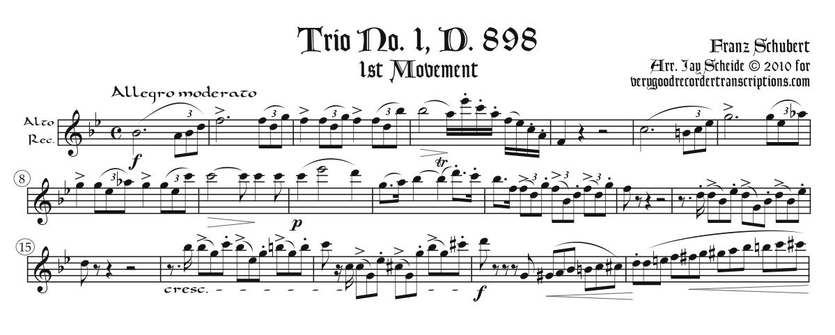 1st Movement from Trio, D. 898